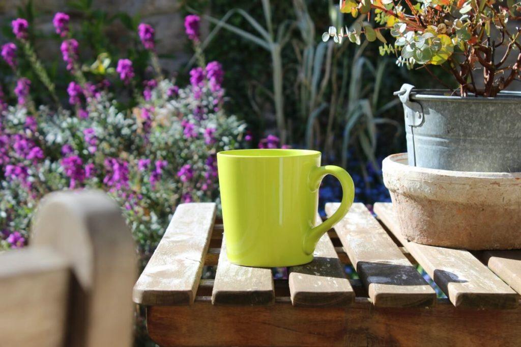 Cup of tea in the garden