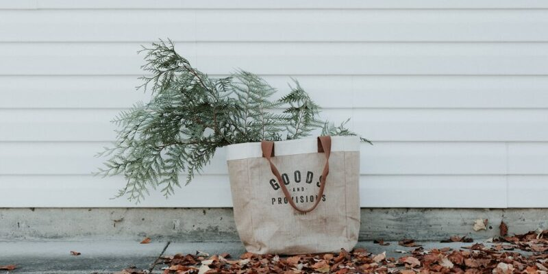 Canvas shopping bag with plant