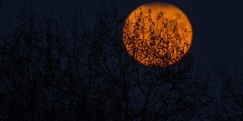 Orange moon in black sky