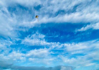 Let's go fly a kite (Alnmouth)