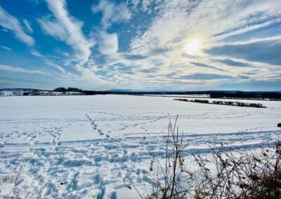 Snowy fields and sunny skies