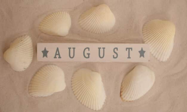 Things to do at the weekend in August