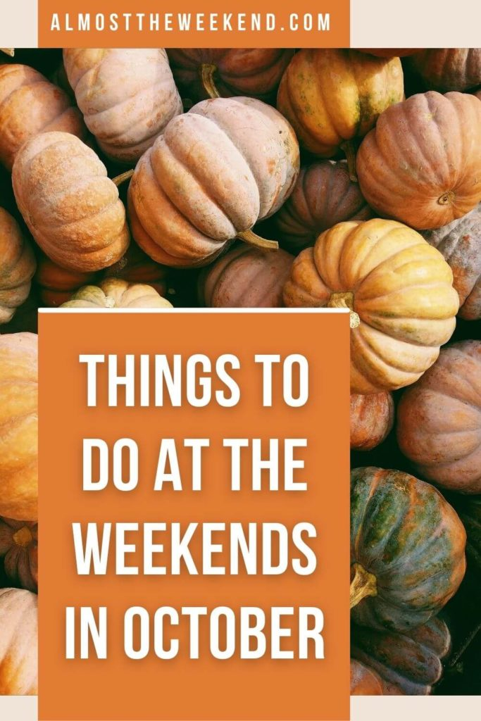 Things to do at the weekends in October. Pumpkins of different sizes and shapes.